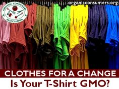 "You probably don't think ""GMO"" when you buy a cotton t-shirt. But it's #Monsanto that now grows about half of the world's cotton. On more than 40 million acres. The top three countries producing GE cotton? India, China and the U.S. Learn more on OCA's Clothes for a Change campaign page: http://organicconsumers.org/clothes/index.cfm"