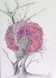 http://lateliermariajosehdez.blogspot.com.es/  Exposición Árboles en las manos y ramas en el pelo. María josé Hdez. Jou Coccoloba