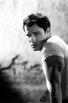 Portrait of actor Marlon Brando as he appears in the film 'A Streetcar Named Desire', for MGM Studios, Get premium, high resolution news photos at Getty Images Martin Scorsese, Alfred Hitchcock, Hollywood Actor, Hollywood Stars, Hollywood Actresses, Vintage Hollywood, Classic Hollywood, Elia Kazan, T Shirt Picture