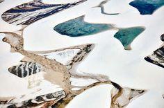 Imaginile IMPRESIONANTE câştigătoare ale concursului de fotografie ,,Wildlife Photographer of the Year Award''
