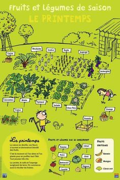 Fruits et légumes – Printemps – Best Pins Live Diy Jardim, Potager Bio, Potager Garden, French Lessons, French Food, French Stuff, Teaching French, Plantation, Learn French