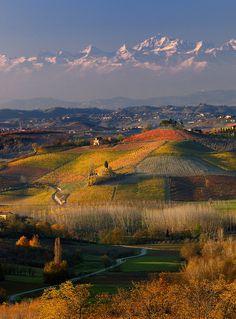 Acquerelli delle langhe * watercolors of langhe . Piemonte, Italy