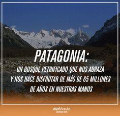 Etiqueta #DíaDeLaPatagonia en Twitter