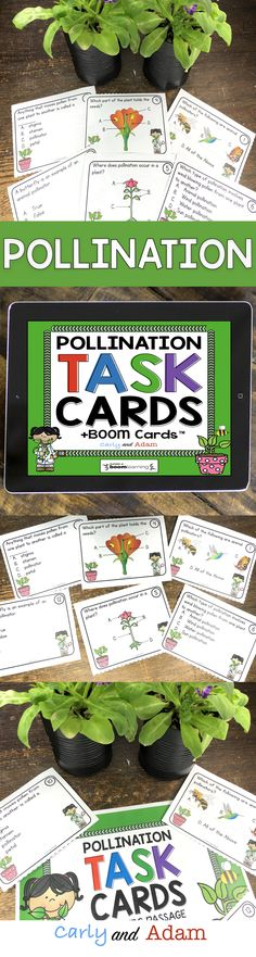 Pollination (Plant Activities): Students learn the basic parts of a flower (pollen, seeds, and stamen). They also learn about how plants are pollinated (wind pollination, animal pollination, and water pollination), as well as some basic pollinators (bees, bats, birds, and butterflies). Pollination task cards and digital BOOM cards are included!