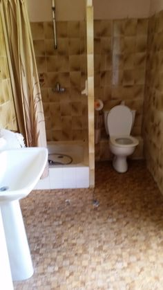 Bathroom, pre-renovation (pretty gross)