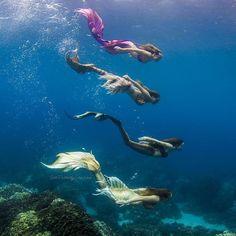 ~ you.little.dark.one Siren Mermaid, Mermaid Melody, Mermaid Cove, Mermaid Kisses, Mermaid Diy, Mermaid Tails, Mermaids And Mermen, Real Mermaids, Merfolk