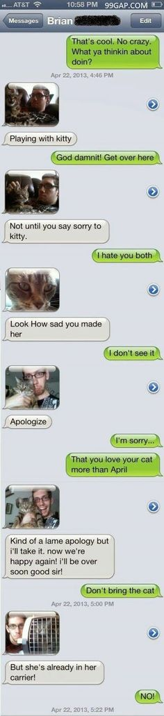 #FunnyTexts Collection About Kitten