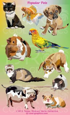 Popular Pets  Vector Clip Art by CleverVectors on Etsy, $3.95