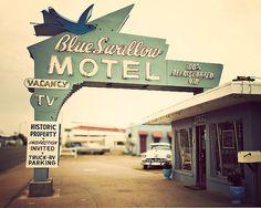 Retro / Photography: Retro Decor, Wall Art, Home Decor, Motel Art- The Blue Swallow, Retro Moder. Route 66, Blue Swallow Motel, Vintage Camera Decor, Vintage Hotels, Vintage Travel, Vintage Ads, Vintage Neon Signs, Historic Properties, Old Signs