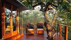 A Hotel in South Africa Wildlife Prot... for only $2.99