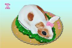 Torta 3D zajac