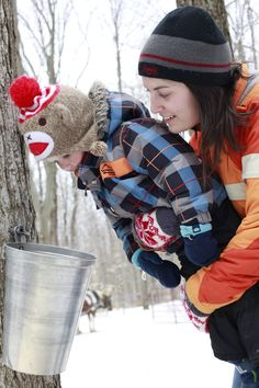 Family fun awaits you in Northumberland this March Break. Taste Ontario maple syrup, view birds in migration, ski, snowshoe or snowmobile on picturesque trails and finish the day relaxing at our family friendly accommodations. Sleigh Rides, Horse Drawn, Maple Syrup, Festivals, March, Snow, Events, Fresh, Nature