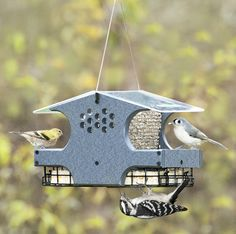Three-In-One Bird Feeder - Feed your birds two important staple foods with one convenient feeder. The hopper dispenses sunflower whole hearts, shelled peanuts, or black-oil sunflower seed. Large tray lets both large and small birds feed, wire mesh front panels provides access to clingers, and feeding holes on both sides cater to woodpeckers. Clearview roof lifts for easy filling.
