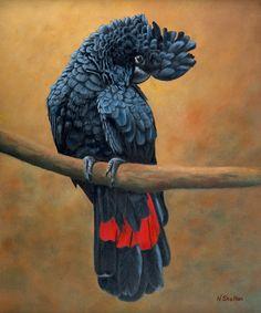 Nicky Shelton  - Bord -  Painting - Jacko Red Tail