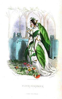 J.J. Grandville Les Fleurs Animees (The Court of Flora) Fleur D'orangeur