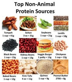 Your healthy living community for everything fitness, nutrition and wellness. Proteine Vegan, Vegan Protein, Vegan Foods, Vegan Vegetarian, Vegetarian Protein Sources, Vegetarian Lifestyle, Vegetarian Facts, Casein Protein, Eating Vegan