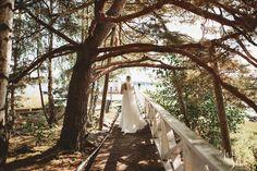Bride |Tree | Sea |Weddings |Wedding Photography | Hääkuva | Morsian |Jere Satamo