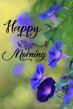 Rainy Good Morning, Good Morning Smiley, Good Morning Post, Happy Morning, Good Morning Picture, Morning Pictures, Happy Saturday, Good Morning Flowers Quotes, Good Morning Beautiful Images