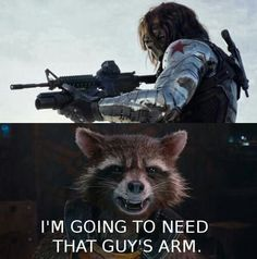 Rocket racoon. .yea best talking racoon ever.