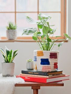 How To Make a DIY Colorful Fringe Coiled Plant Holder | Apartment Therapy