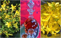 Kauniin punaista, hyvänmakuista snapsia johannesyrtistä (=mäkimeirami). Lisää kesällä kukat viinaan ja anna muhia jouluun asti, siivilöi/suodata karahviin. Tarjoa kala-alkuruokien palanpainikkeena. Helan går! :)