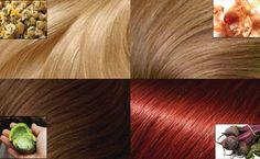 Ste unavení zo všetkých tých chemických farieb na vlasy a túžite po krásnych zdravých vlasoch? Dnes vám prinášame všetky prírodné spôsoby na dosiahnutie skvelej farby priateľnejšou a zdravšou cestou. Zelená ochranná vrstva vlašských orechov – pre hnedé vlasy Najprv olúpte 15-20 vlašských orechov. Zelenú dužinatú časť nakrájajte a postrúhajte. Pridajte horúcu vodu. Miešajte polievkovou lyžicou, …