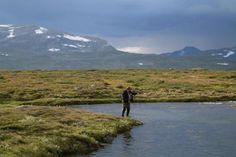 On the Kalfjäll 1 - GFFpix - share your best flyfishing pictures - Global FlyFisher