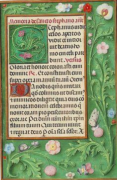 Collage Illustration, Nature Illustration, Botanical Illustration, Illustrations, Medieval Manuscript, Medieval Art, Illuminated Letters, Illuminated Manuscript, Horticulture