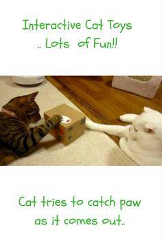 Interactive Cat Toys. Cat Pop Up Box..cat stuff, cat products for the home, cat products for cats, cat toys