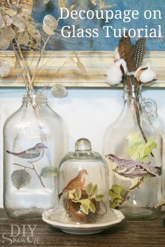 Decoupage on glass using Martha's decoupage and botanical birds cutouts.