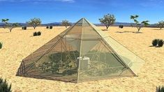 """Source: www.trueactivist.com 