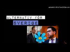 Om det nya partiet - Alternativ för Sverige #Val2018 - YouTube