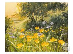 Golden Sunset Giclee Print by M. Dipnall at Art.com