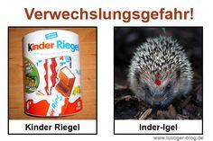 http://www.lustiger-blog.de/category/verwechslungsgefahr/page/3/