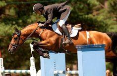 Les chevaux de sports - Flipper d'Elle - Flipper d'Elle et Laurent Goffinet en compétition