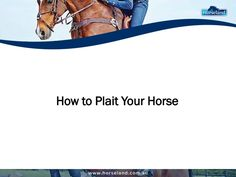 Do you need to learn to plait your horse for a presentation? #horse #plaiting