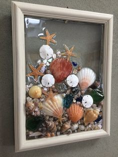Sea Glass Seashell And Sand Dollar Art Suncather Beach Wall Art Made In The USA
