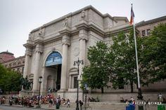 American Museum of N