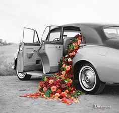 i like this photo bc i think its neato how the flowers are spilling out of the car