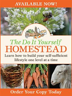 The Do It Yourself Homestead l Your choice for information on gardening, livestock, family frugality, sustainable living, preparedness and more!