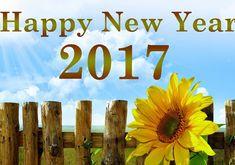 2017-happy-new-year-happy-new-year-2017-happy-new-year-2017-wishes