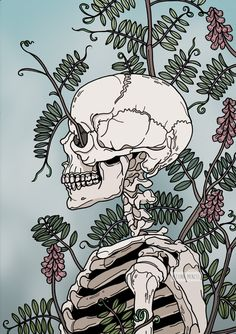 Human Body Art Wallpaper New Ideas Human Body Art, Human Body Drawing, Skeleton Art, Anatomy Art, Human Anatomy, Bizarre, Skull Art, Aesthetic Art, Dark Art