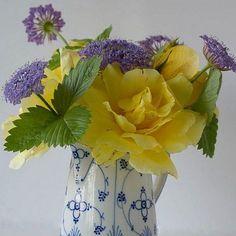 Bom dia! Uma semana abençoada a todos!  #olioliteam #flowers #latabledegiselle #royalcopenhagen #porcelain