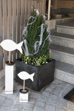 Polly kreativ: Deko zur Konfirmation The post Polly kreativ: Deko zur Konfirmation appeared first on frisuren. Hydrangea Seeds, Citrus Garden, Life Is Too Short Quotes, Life Quotes, Puppy Food, Decorated Jars, Party Centerpieces, White Ribbon, Creative Decor