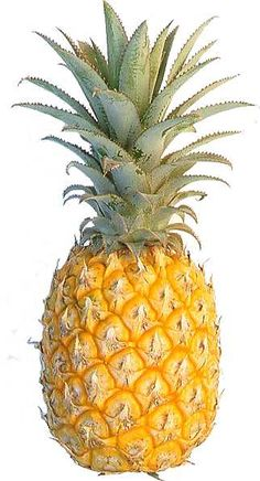 The pineapple is a symbol of hospitality in the south.