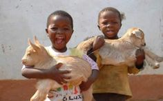 -children happy with their kid-goats