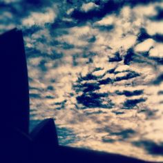 """""""#marchphotoaday Day 14 