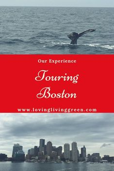 Have you thought about visiting Boston? There is so much to do in the city! Read on to see how we toured Boston and enjoyed every minute. Family Road Trips, Family Travel, Family Vacations, Boston Travel Guide, New England Travel, Beach Trip, Beach Travel, Best Places To Travel, Travel Usa