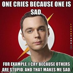 I cry because others are stupid
