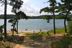 Nickerson State Park Campgrounds (Brewster, MA - Cape Cod)